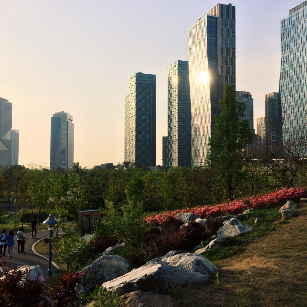 incheon songdo central park