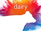 dairy-4