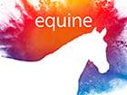 equine-3
