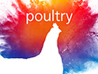 poultry-5