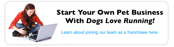dogs love running franchise information image
