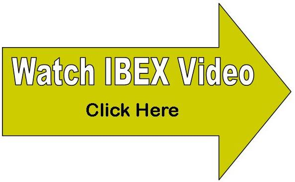 Ibex ultrasound video