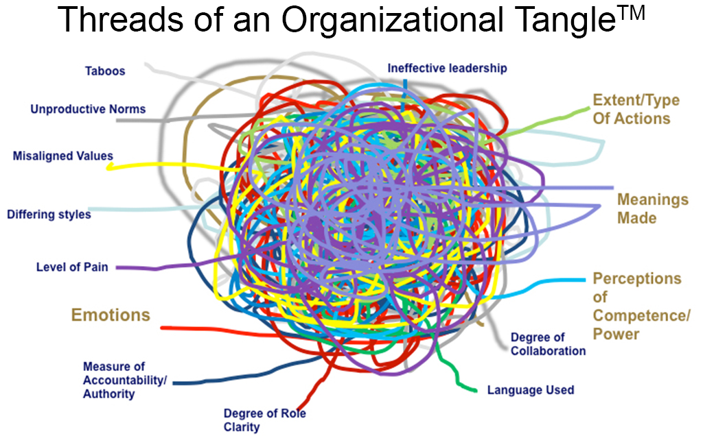 Threads of an Organizational Tangle