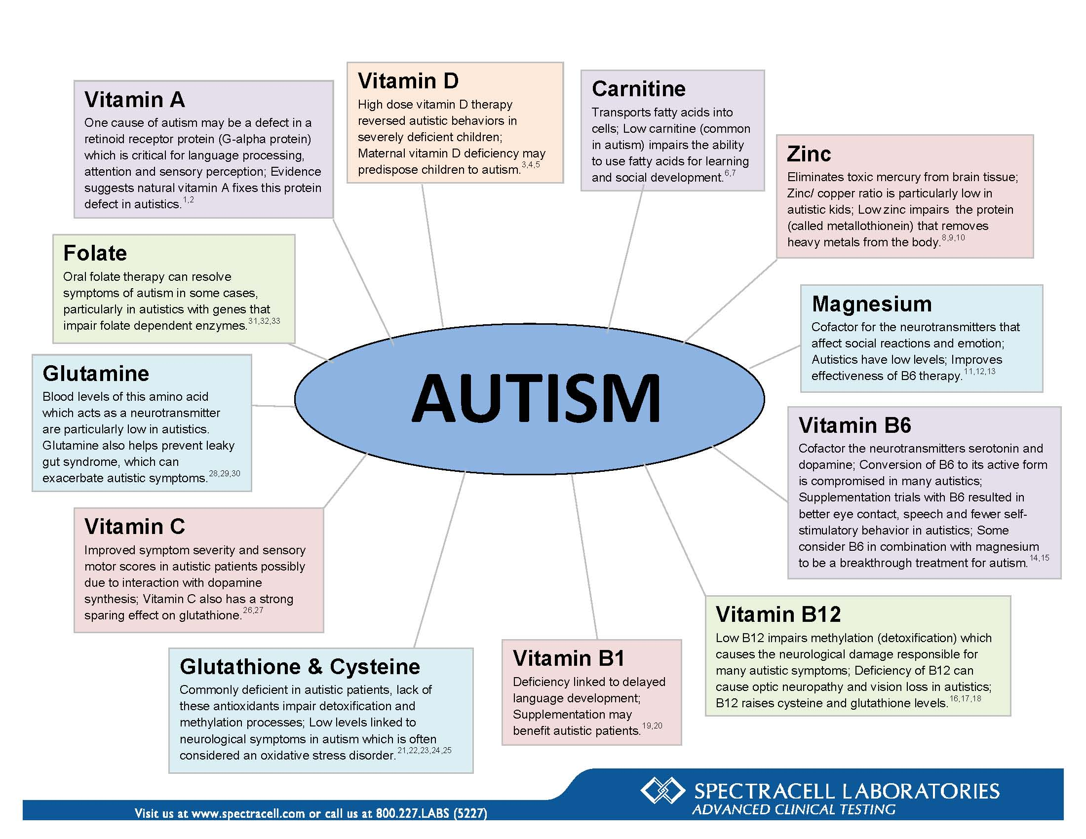 SpectraCell's Nutritional Correlation Chart on Autism
