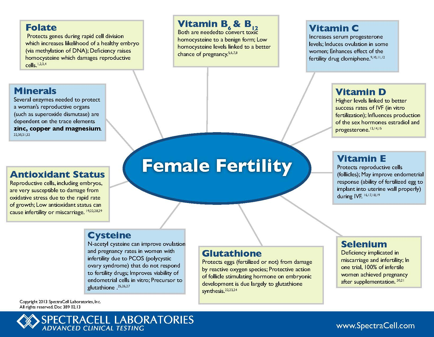 389 Female  Fertility Wheel 2.13 Page 1