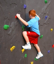 This 2 panel climbing wall is designed for easy at home installation. Comes complete with brightly colored holds. Panels are 4' wide and 7' high. The total climbing area is 8' long x 7' high. Installation is required. Shipping Weight: 215lbs.