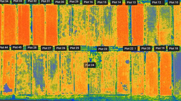 HEA_BLO_AGR_Pix4Dfields_1.9_Release_2.jpg?w=1600&fm=jpg&q=80