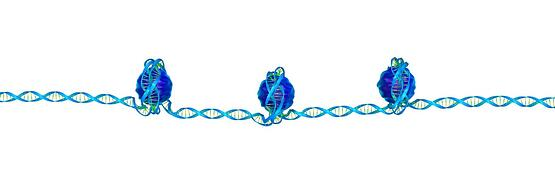 Translating the power of epigenetics into real benefit for humankind