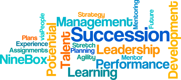 Emergency succession planning template