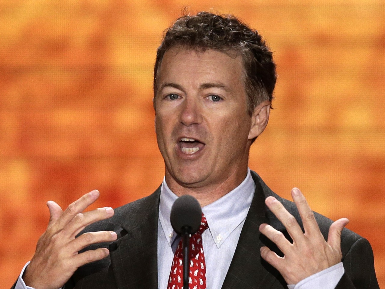 rand paul faces plagiarism allegations