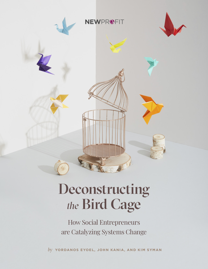 Deconstructing_the_Birdcage