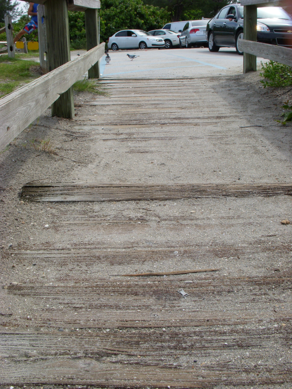 Jupiter Inlet SYP Timber Boardwalk resized 600
