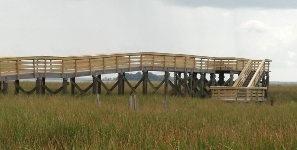 wetland boardwalk observation deck
