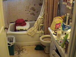 Walk In Shower Bathroom Remodel Steve Way Builders Llc