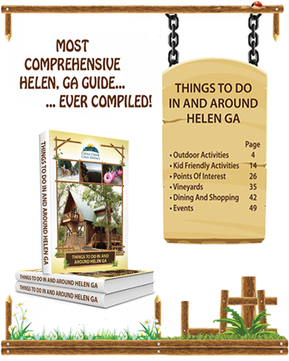 IMG most comprehensive helen ga guide   adv landing page1