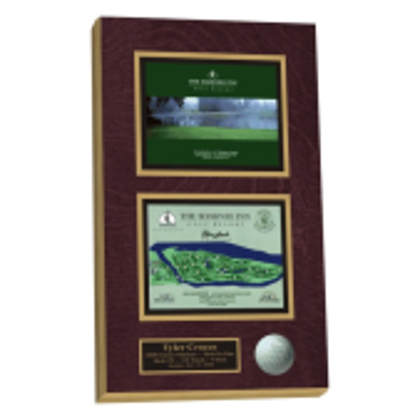Hole in One Wall Plaque - Beauty Shot of hole with diagram of hole and ball mounted.