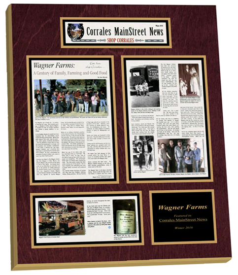 newspaper frame, newspaper frames, framed article plaque