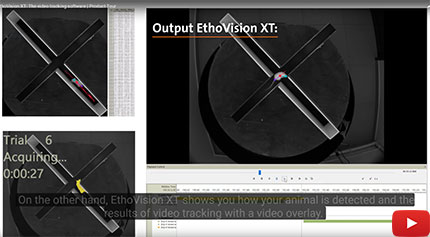 EthoVision-movie.jpg