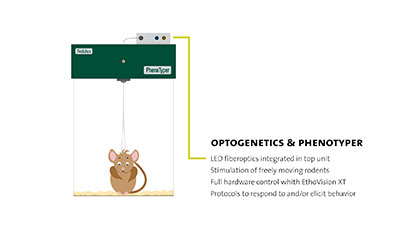 Optogenetics.jpg