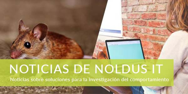 Noticias de Noldus IT