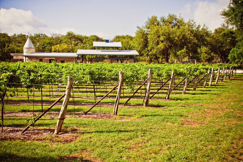 Backyard Vineyard Ideas : Date Night Ideas Romantic Things to Do in New Braunfels, Texas