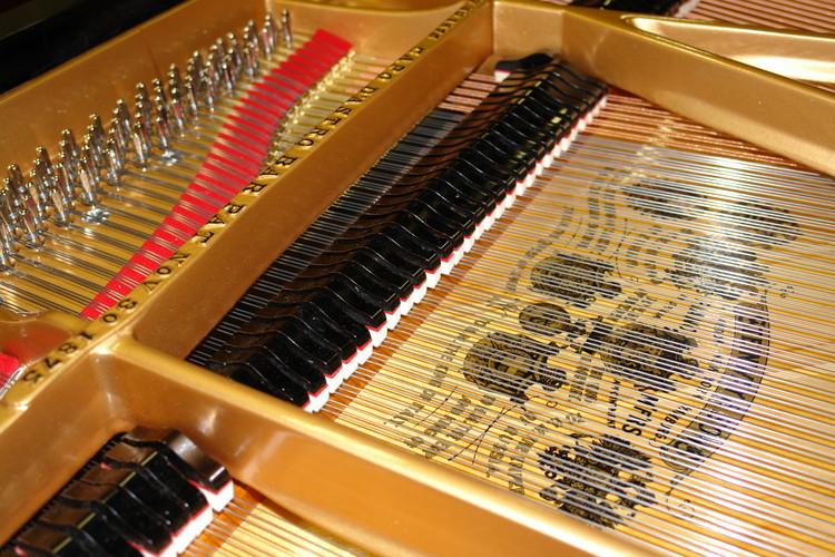Schimmel Pianos vs Steinway Pianos | Cooper Piano