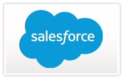 Salesforce.com Consulting