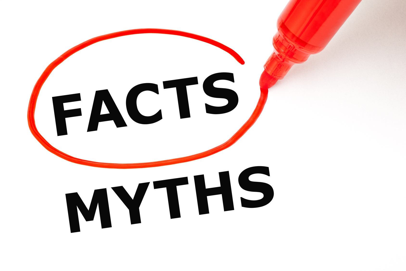 5 common college application essay myths