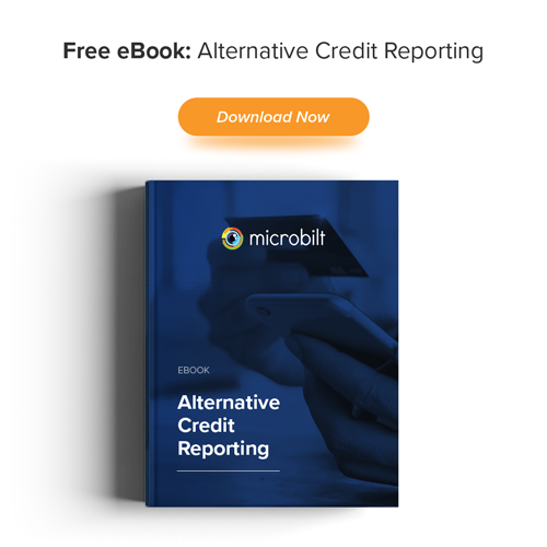 eBook: Alternative Credit Data