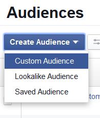 Create an Audience