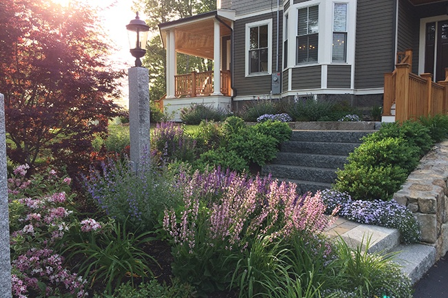 Residential Landscaping Ideas : Residential commercial environmental landscaping services