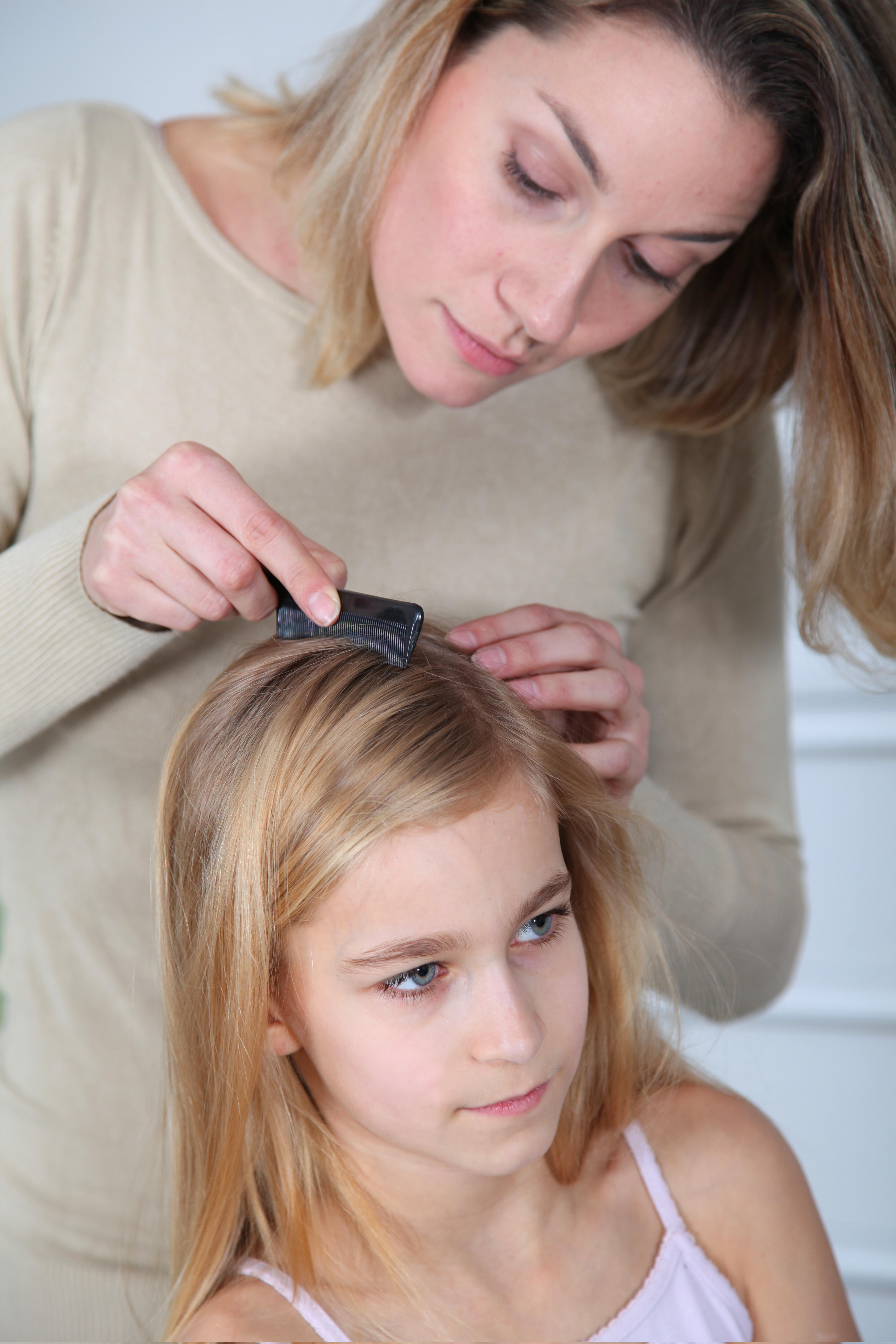 health_child_lice check (2)
