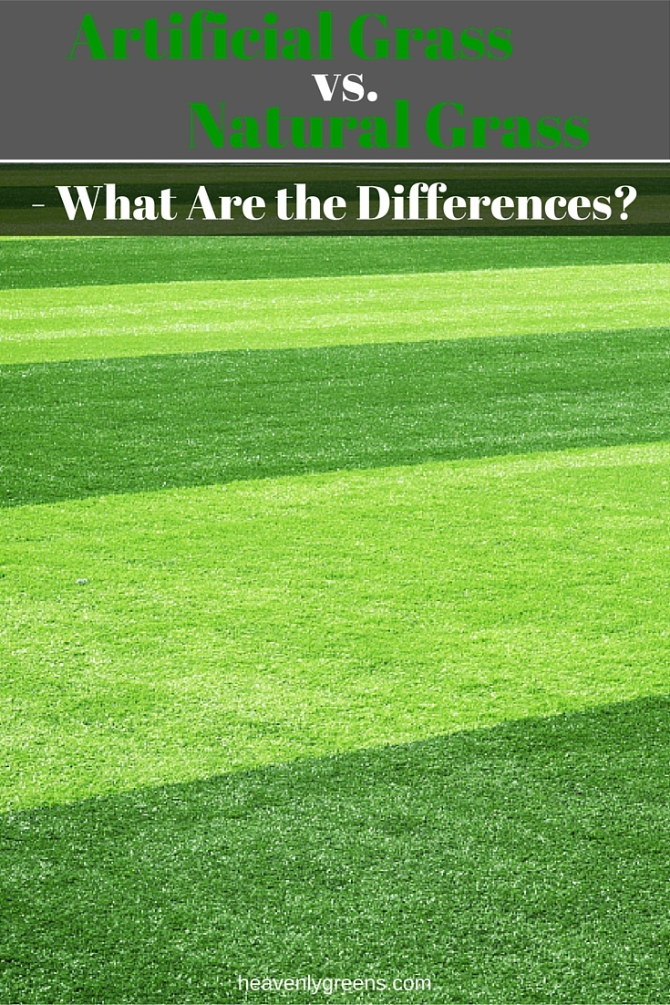 Artificial turf pros and cons - Artificial Turf Pros And Cons 25