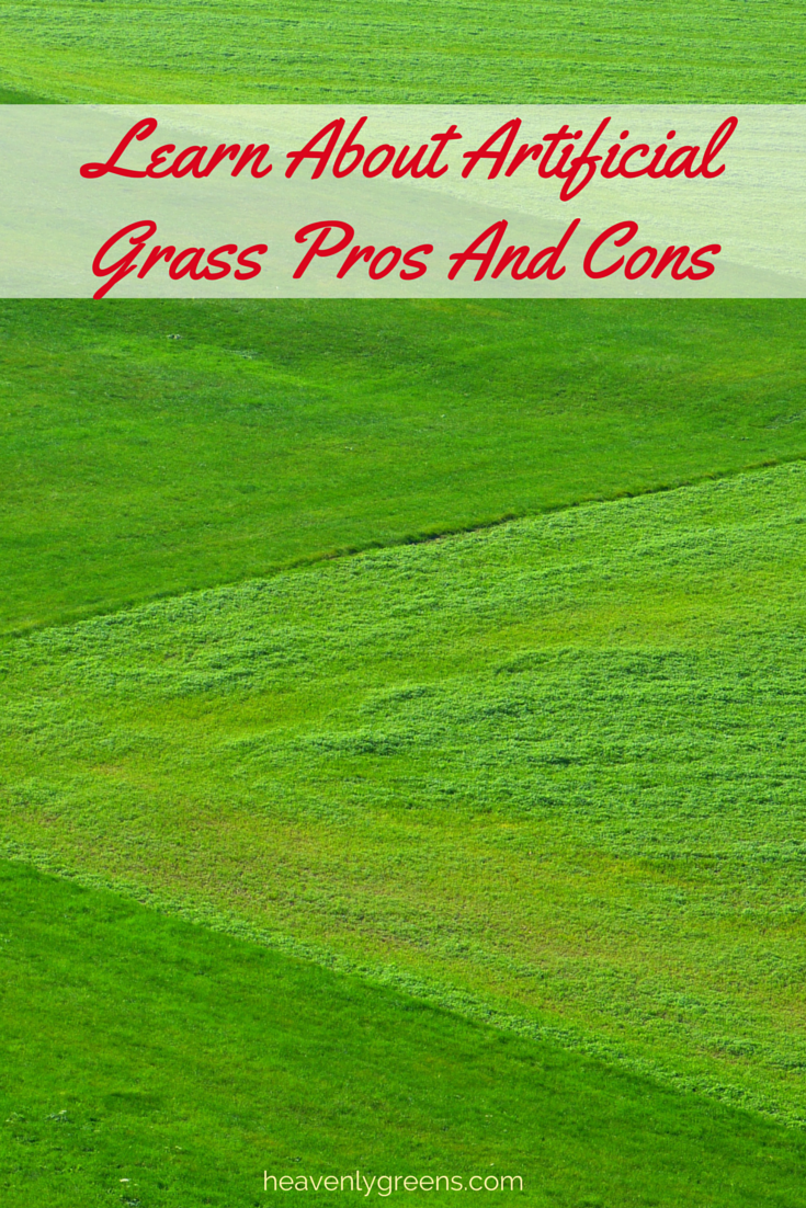Artificial turf pros and cons - Artificial Turf Pros And Cons 10