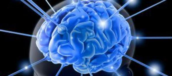 Vitamin d and fish oils control brain serotonin for Fish oil concussion