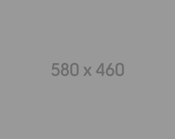 550x450