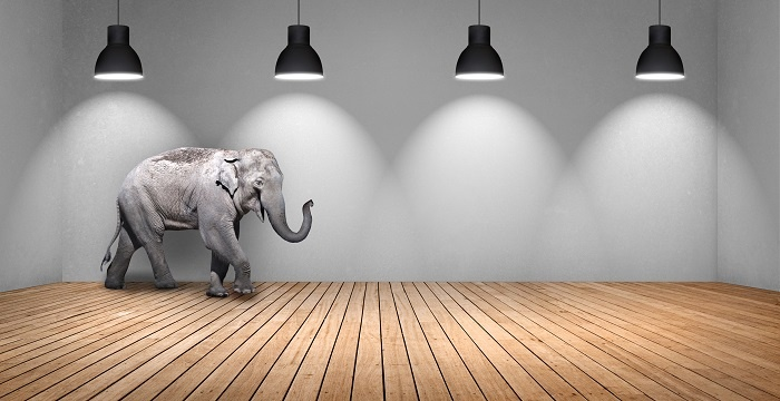 Pricing: Addressing the Elephant in the Room [Podcast]