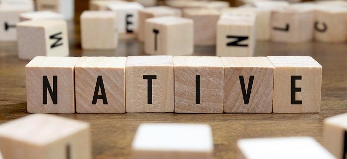 Google, Microsoft, Facebook Fight to Preserve Ethnic Languages