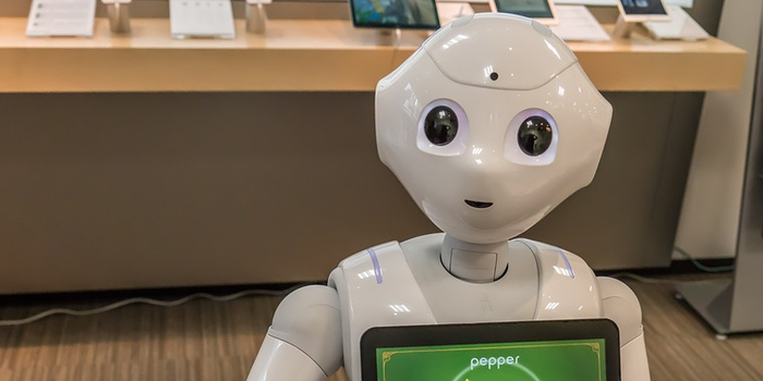 Robots & Resorts: Embracing Technology Japan Style