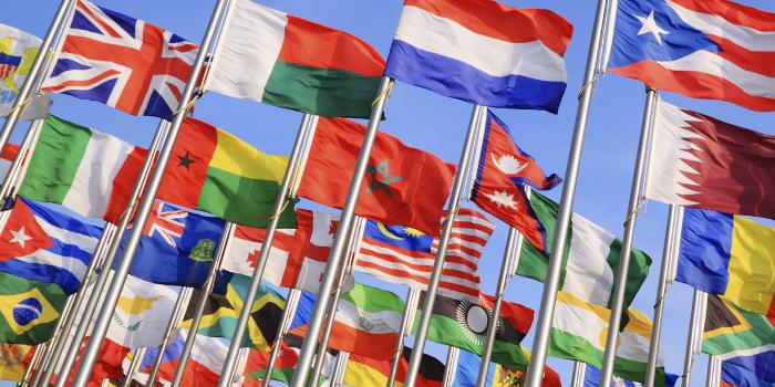 翻訳が正しい理由で注目される日 (国連決議A/RES/71/288について)
