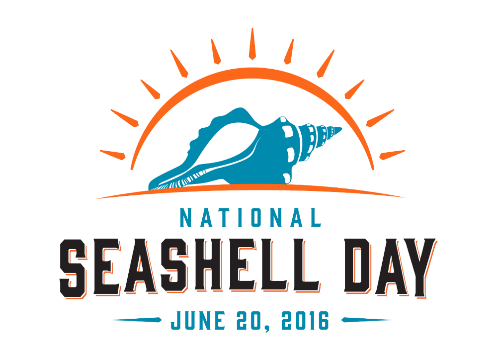 seashell day.png