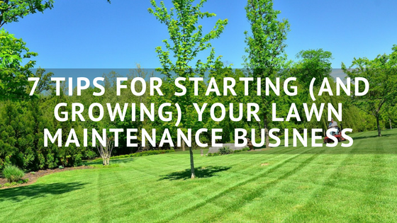 7 Tips For Starting And Growing Your Lawn Maintenance