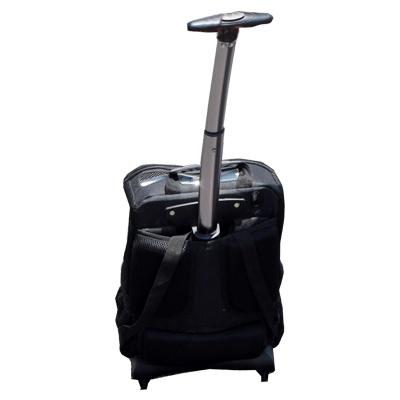 Backpack Tilted-1