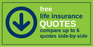 Life Insurance Quotes For Parents Gorgeous Single Parents And The Cost Of Term Life Insurance