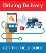 Read the Driving Delivery Ebook now
