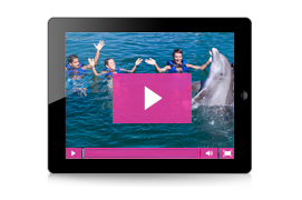Video HD de tu nado con delfines - Delphinus Photo Store
