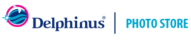 photo-delphinus-logo-header.png
