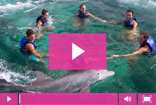 Compra online las fotos de tu nado con delfines - Delphinus