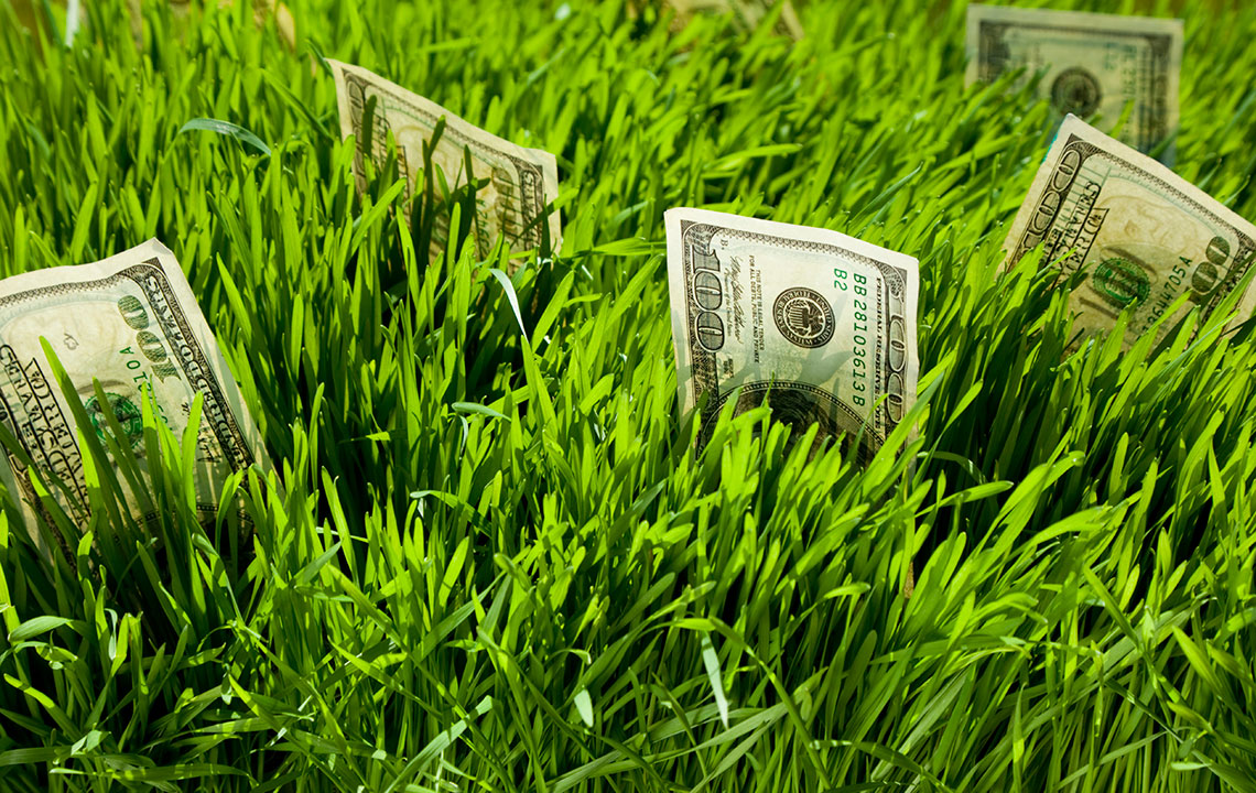 Why Land Is One Of The Safest Places To Invest Money