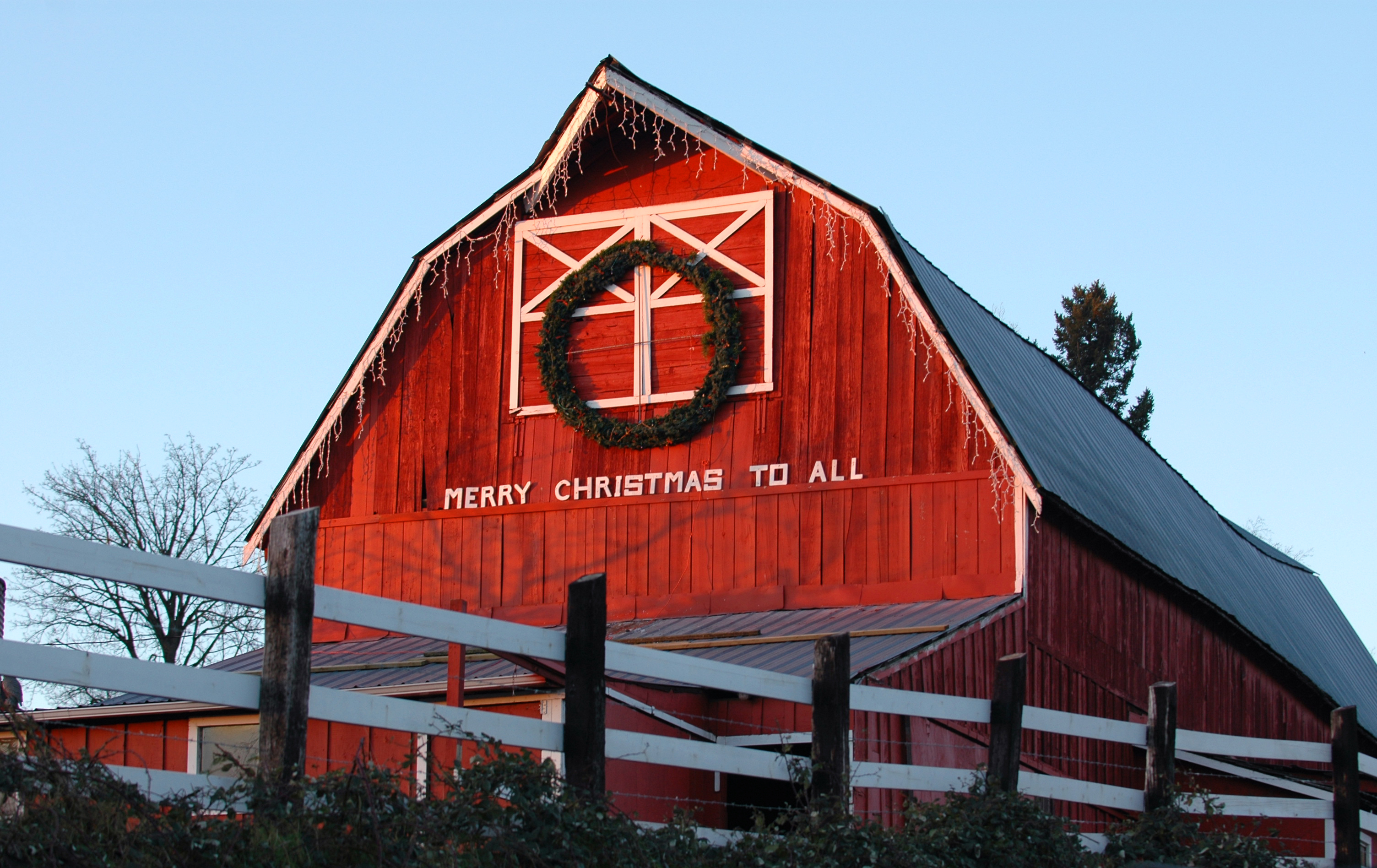 The Twelve ways of Christmas in the Country